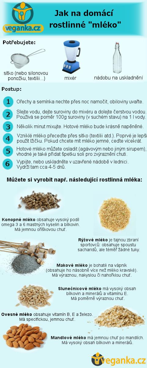 Výroba rostlinného mléka